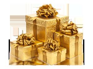 Newsletter Gift